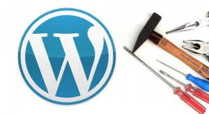wordpress data backup image