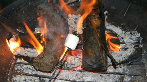 roasting marshmallow over fire