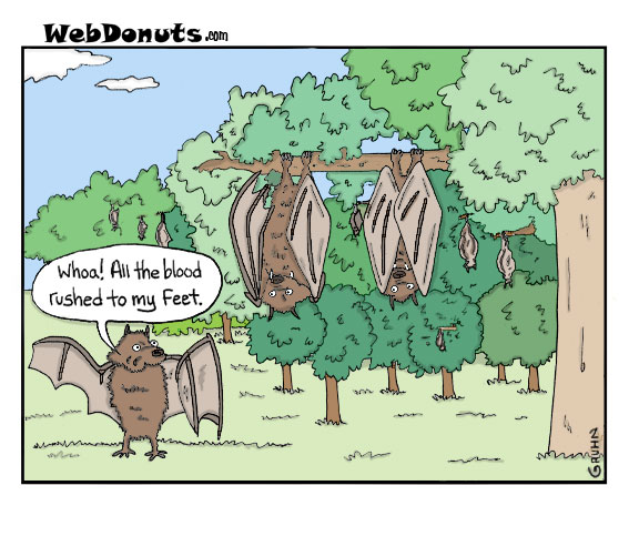 webdonuts bats cartoon mike gruhn