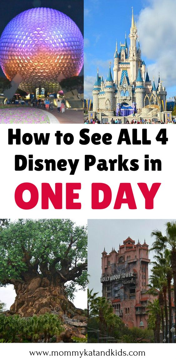 4 disney parks 1 day park hopper