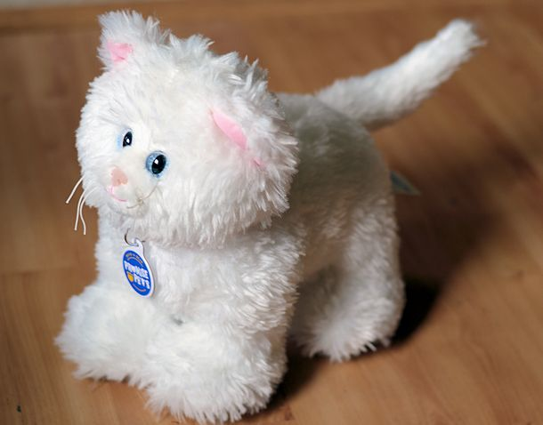 build-a-bear promise pets persian cat