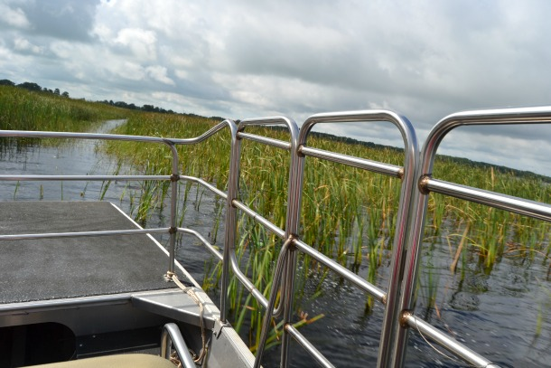view from wild florida airboat