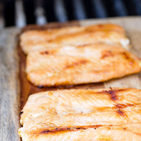 glazed-maple-dijon-salmon
