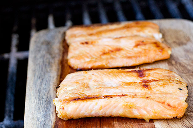 glazed-salmon-closeup